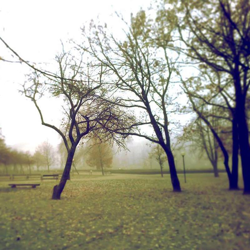 stromnoir