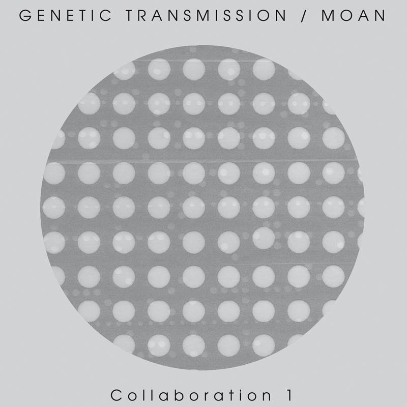 Collaboration 1